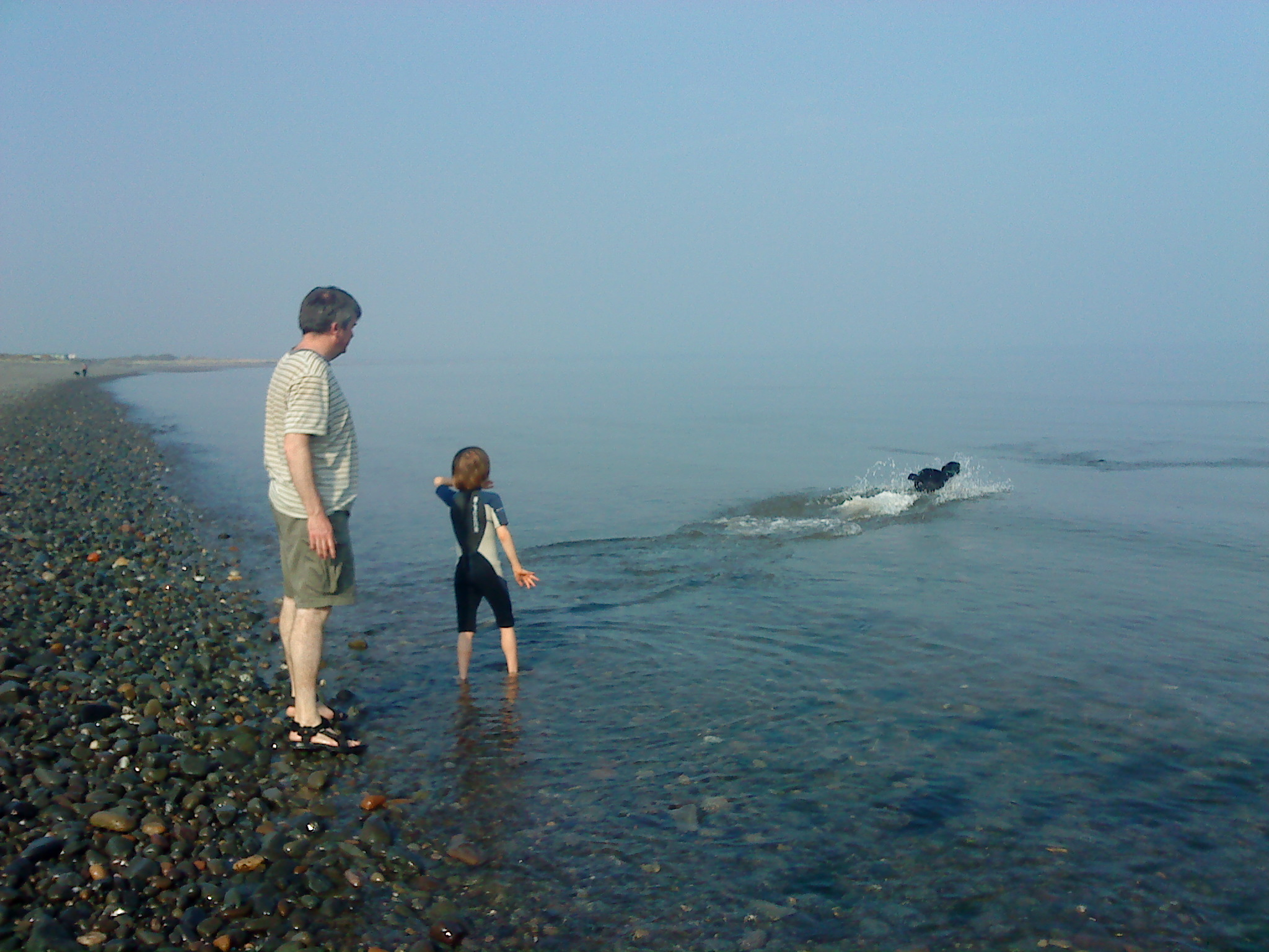 Wanda chasing a pebble thrown into sea